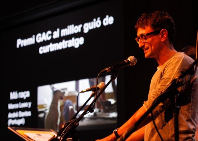 L'Alternativa 2013 - Premios