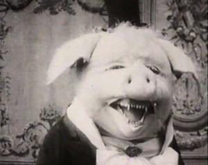 El perfecto cerdo